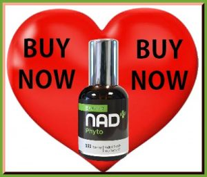 BUY NAD+PHYTO NOW