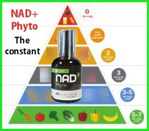 NAD+Phyto constant in the diet