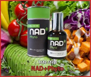 NAD+Phyto the first step